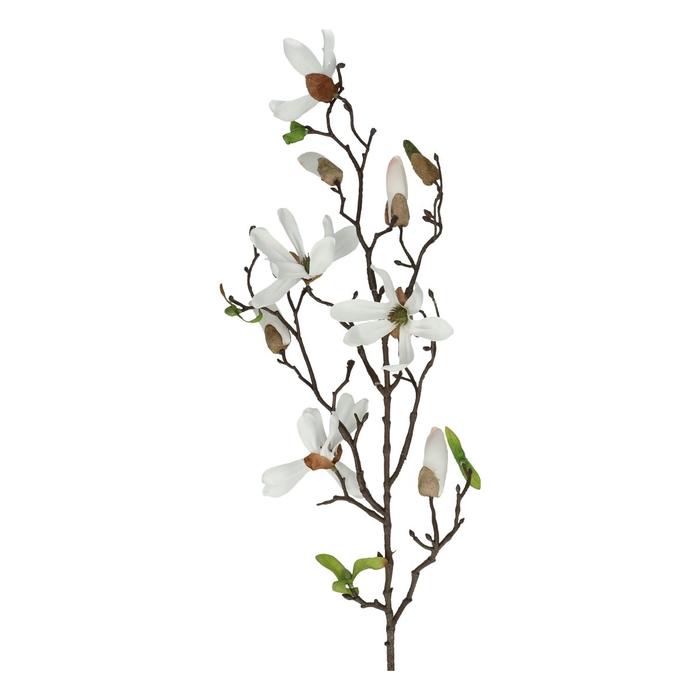<h4>Silk Magnolia spray 75cm</h4>