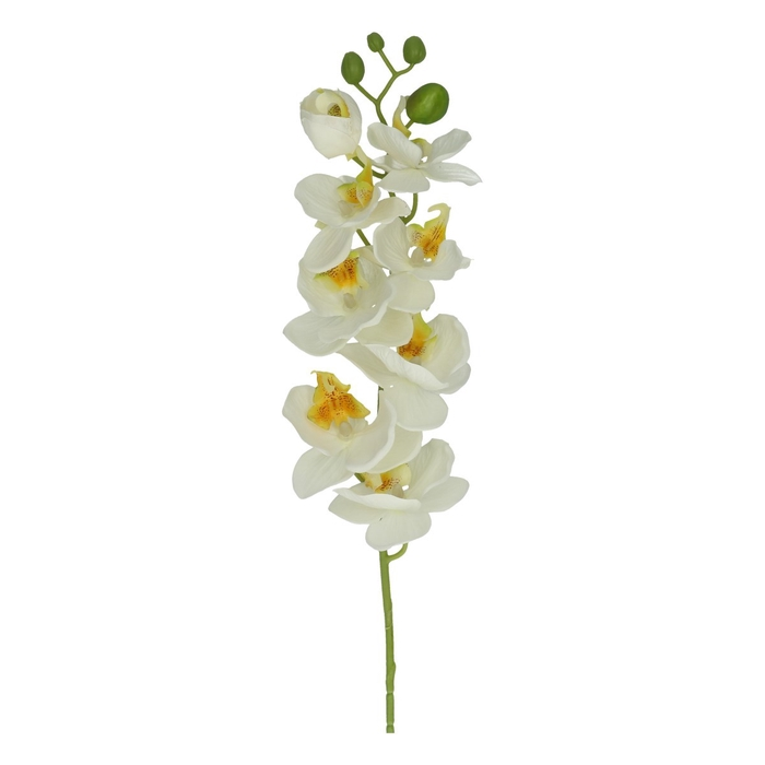 <h4>Silk Phalaenopsis spray 68cm</h4>