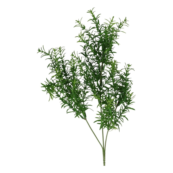 <h4>Silk Asparagus spray 60cm</h4>