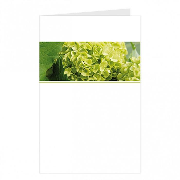 <h4>Labels Kaart 09*14cm x12 Blanco</h4>