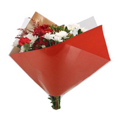<h4>Housses 35x35cm Oblique OPP50/Kraft brun rouge</h4>