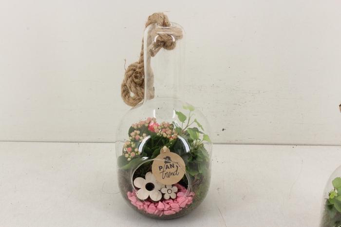 <h4>arr. PL - Glas fles hals hang - roze</h4>