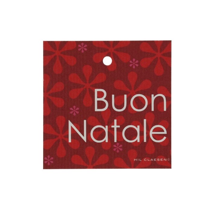 <h4>Labels Cards 70mm x25 Buon Natale</h4>