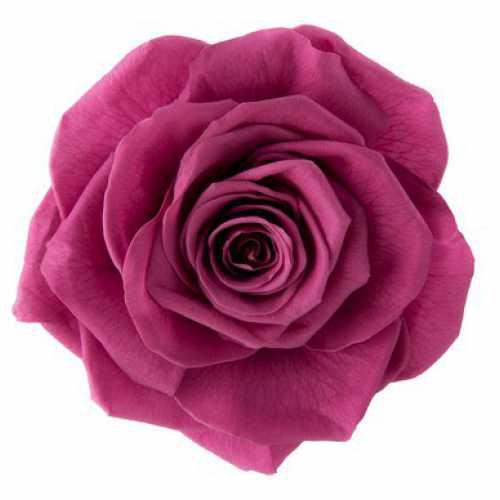 <h4>Rose Monalisa Rose Wine</h4>