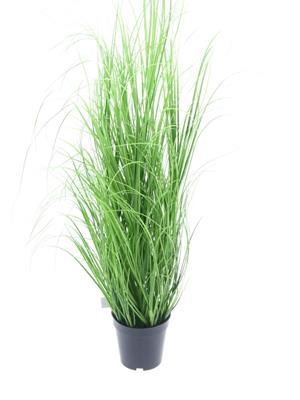 <h4>Af Potted Wild Grass Plant 94c</h4>