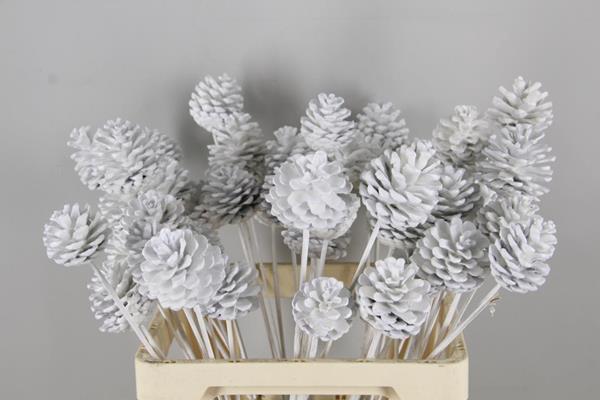 <h4>Stick Pine Cone  Wax White</h4>