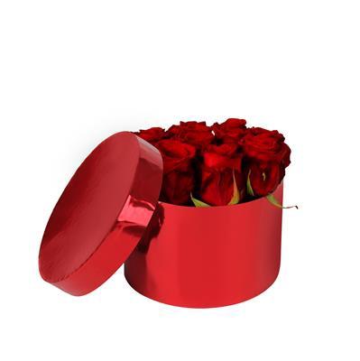 <h4>Hoedendoos karton Ø14xH10cm glans rood</h4>