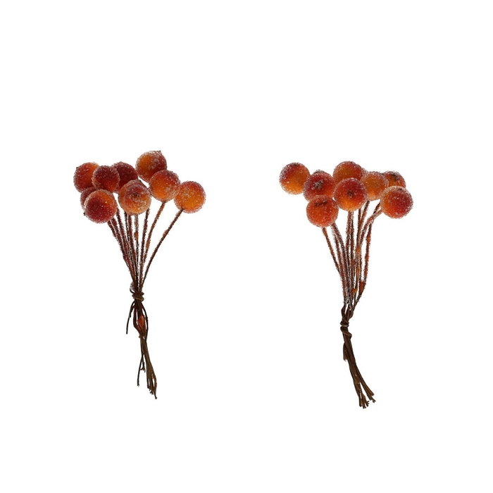 <h4>Autumn Berry frosted/wire d1cm x120</h4>
