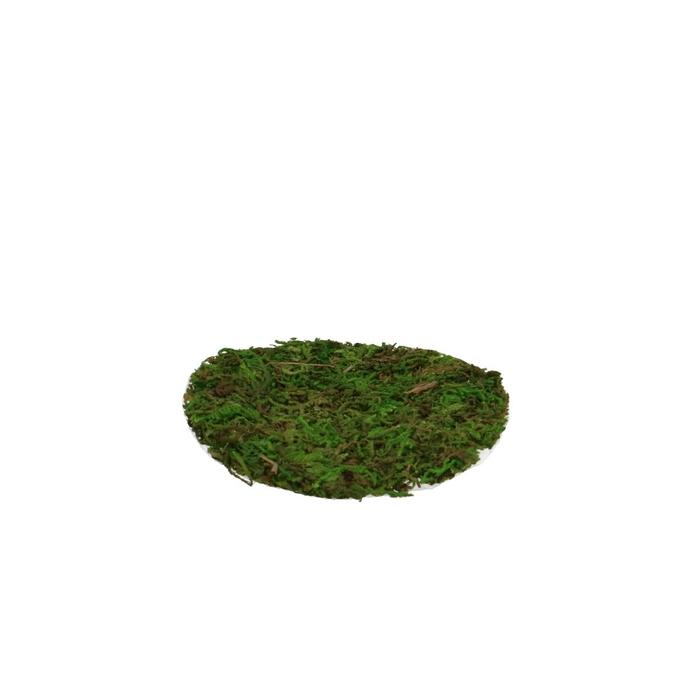 <h4>Dried articles Moss sheet rnd d10cm</h4>