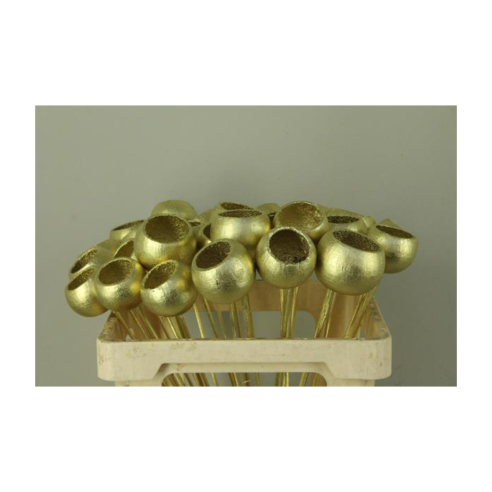 <h4>Stick Bell Cup Gold</h4>