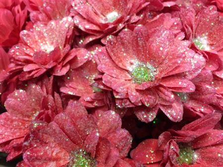 <h4>Chr T Bacardi Red + Glit</h4>