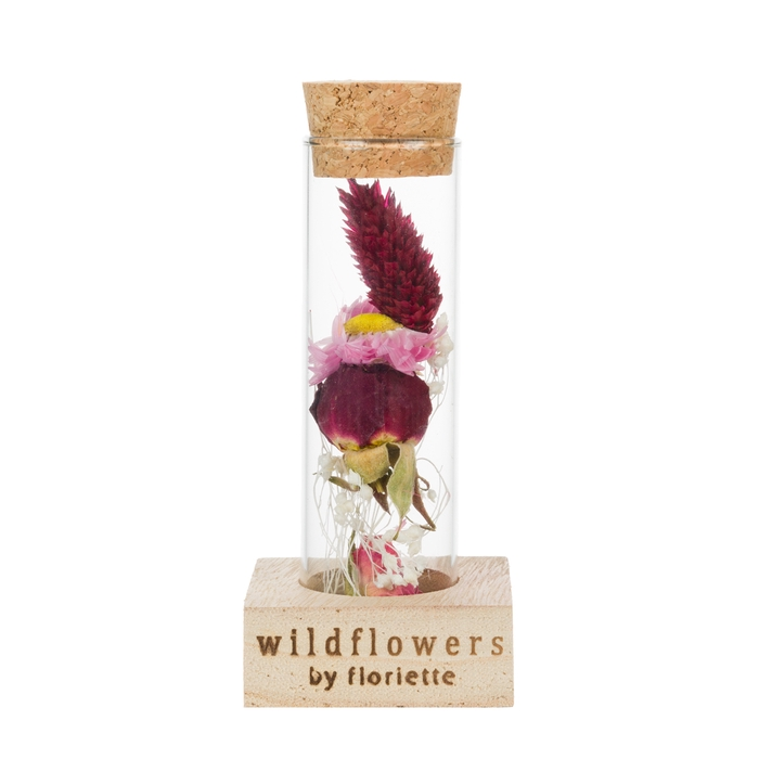 <h4>WOODEN STAND WISH BOTTLE SINGLE NATURAL</h4>