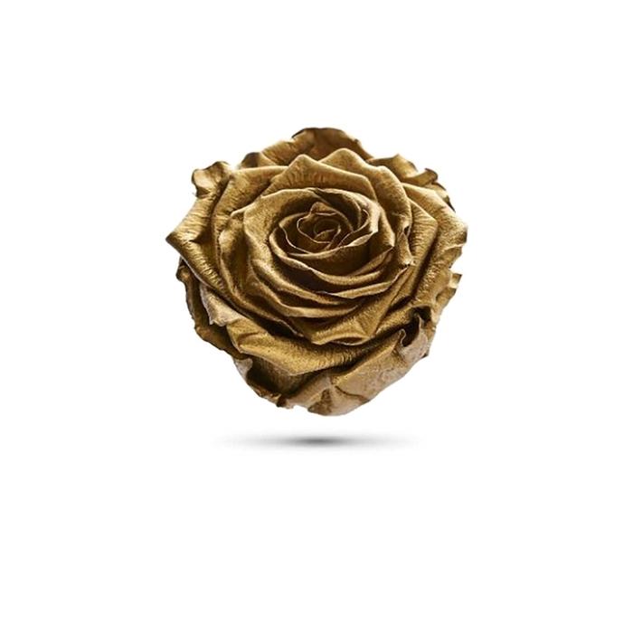 <h4>Rosa preservada cabeza metal oro</h4>