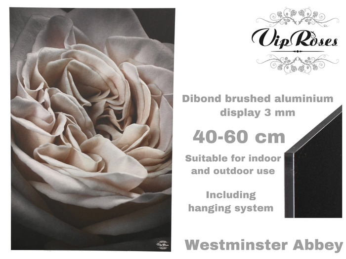 <h4>Vip Display Westminster Abbey</h4>