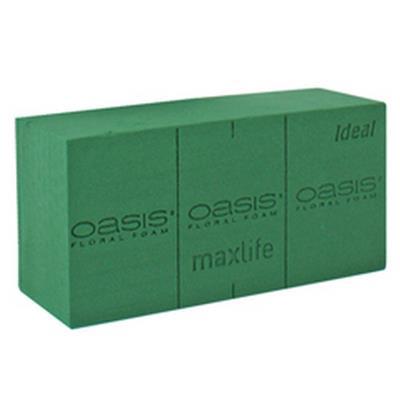 <h4>Oasis bloque Ideal 23x11x8cm - boîte de 20pcs</h4>