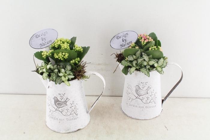 <h4>arr. TD Melkkan jardin - roze/wit</h4>