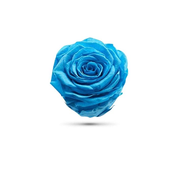 <h4>Rosa preservada cabeza celeste</h4>
