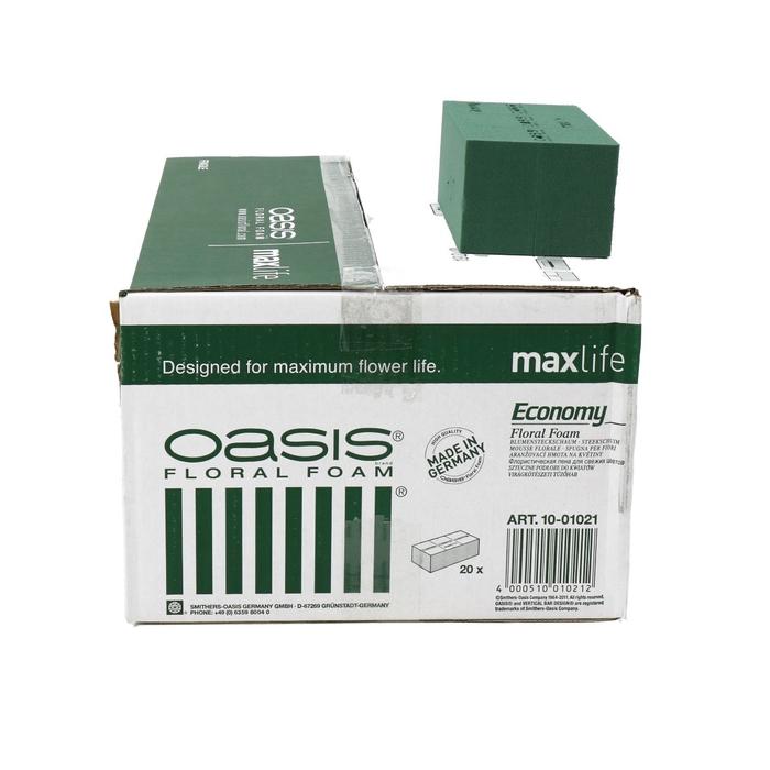 <h4>Oasis Brick Economy x20 20*10*8cm</h4>