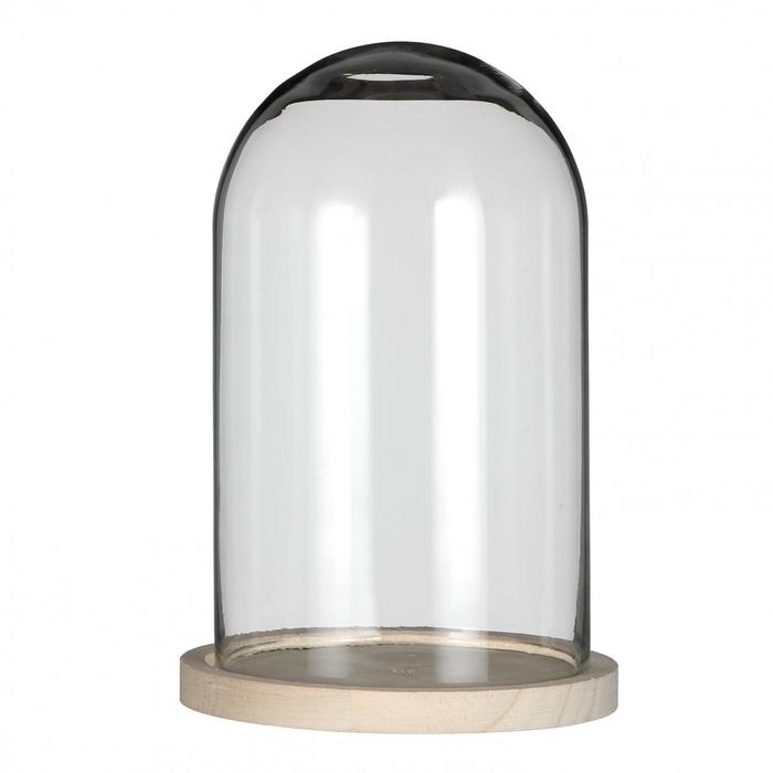 <h4>Glass Cloche+wood d17*25cm</h4>