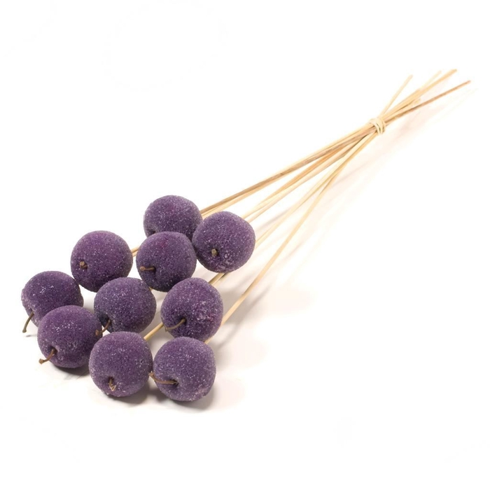 <h4>Apple sugar 5cm o/s SB purple</h4>
