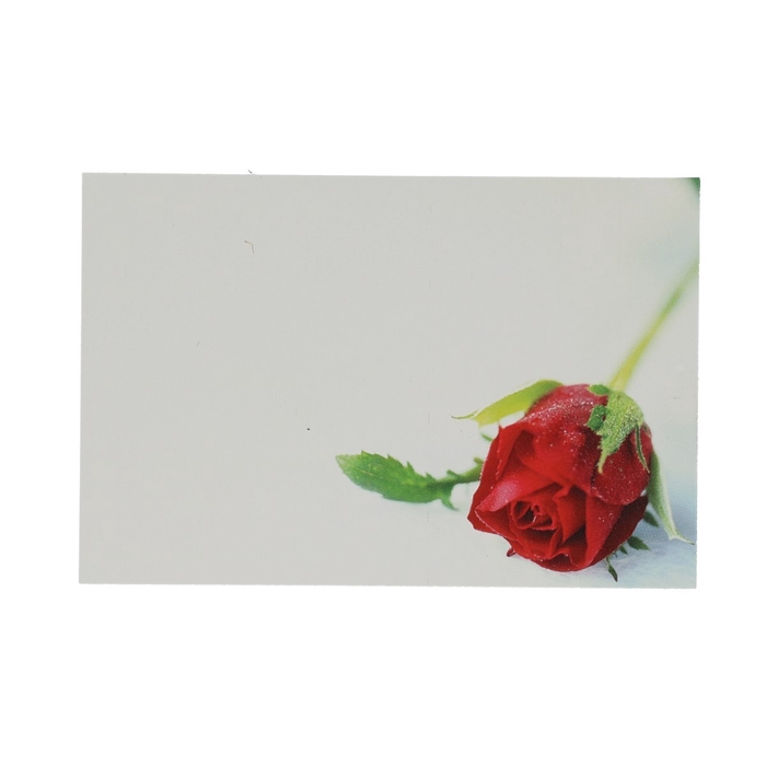 <h4>Labels Kaart 9*6cm x50 Red Rosebud</h4>