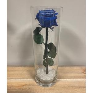 Cilinder d10x30h blauw