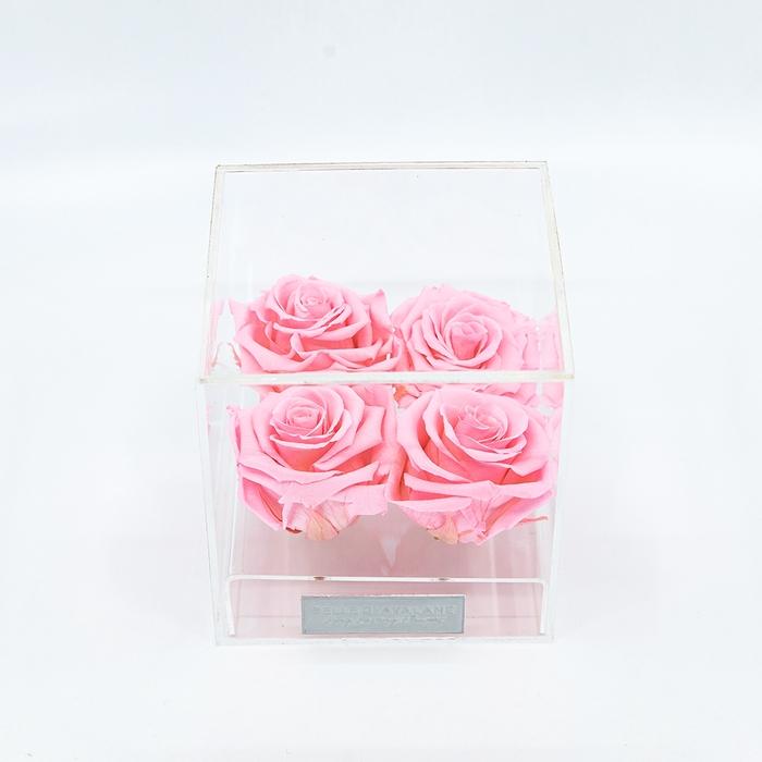 Plexi 12.5cm roze rozen