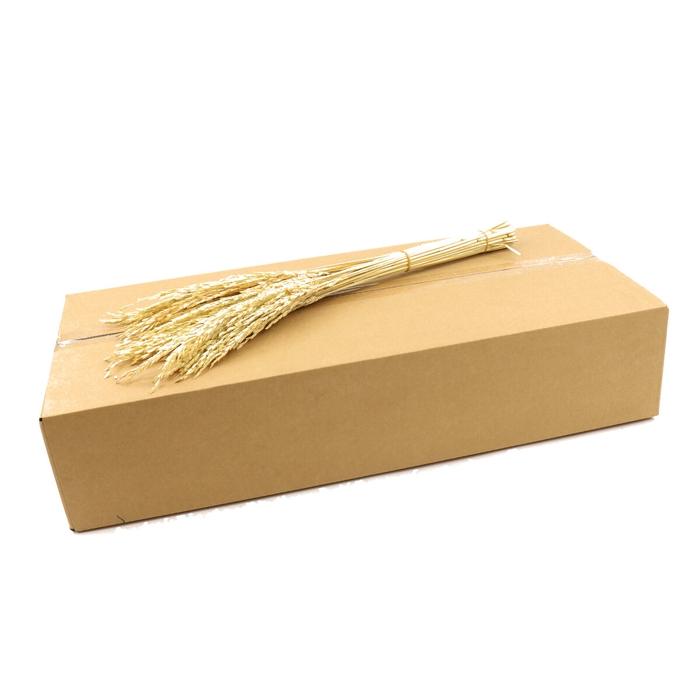 <h4>Droogbloem/doos Rice Oryza 50cm</h4>