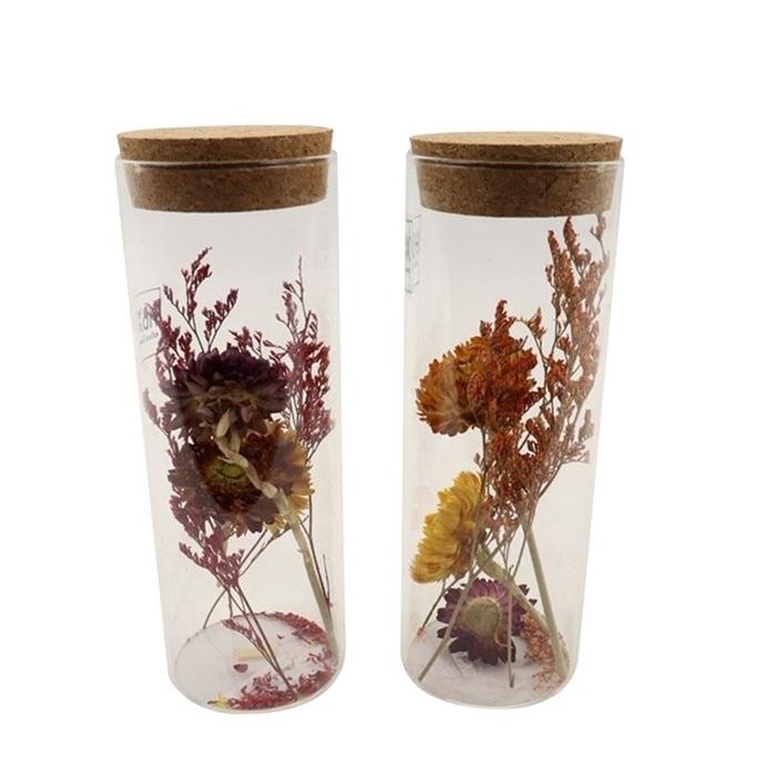 <h4>Dried flowers Glass+dried flower d6*18cm ass.</h4>