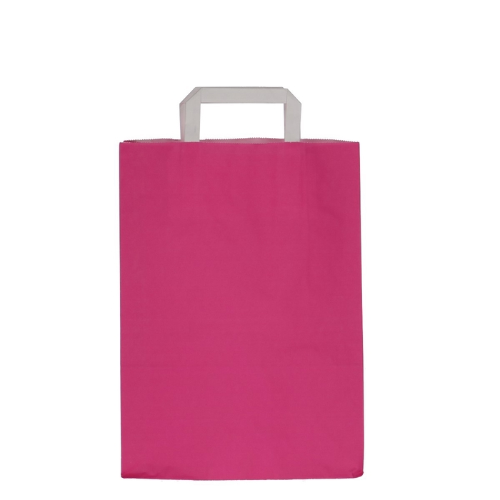 <h4>Tassen Papier d26/12*35cm</h4>
