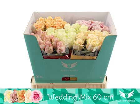 <h4>R Gr Wedding Mix</h4>