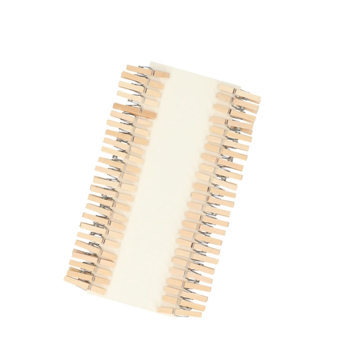 <h4>Decoration Pegs 25mm x48</h4>