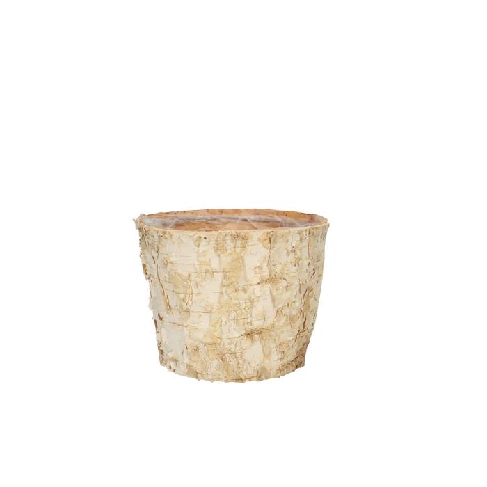 <h4>Hout Berk pot d13*10cm</h4>