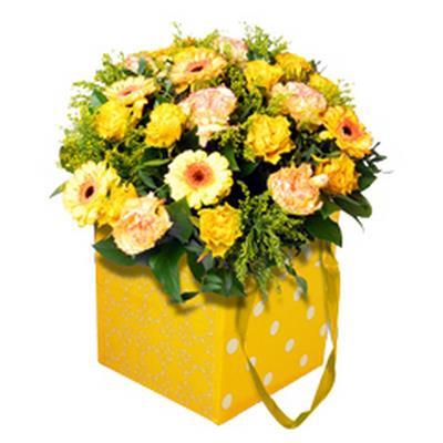 <h4>Sac à plastic luxe  16x16x16 + ruban Quatro jaune</h4>