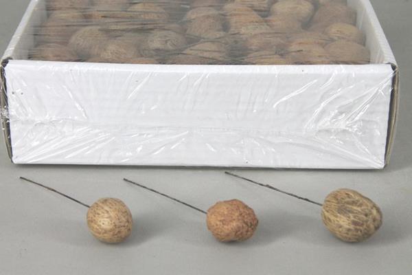 <h4>Amra Pod On 10cm Wire Box(175)</h4>