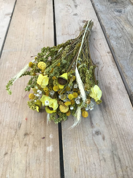 <h4>DRIED BOUQUET FANTASIA YELLOW PB</h4>