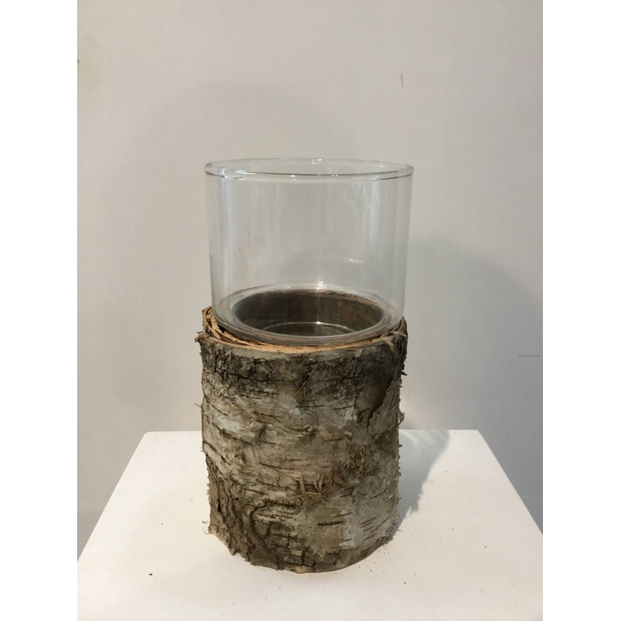 <h4>BIRCH AND GLASS HURRICANE 19X10,5CM OASIS-DECO</h4>