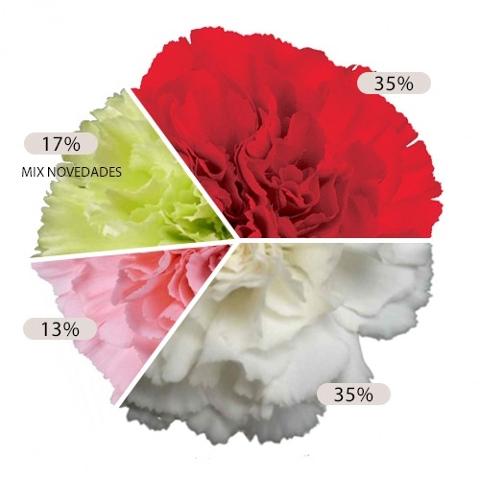 <h4>Clavel mixto Fancy (Geoflora)</h4>