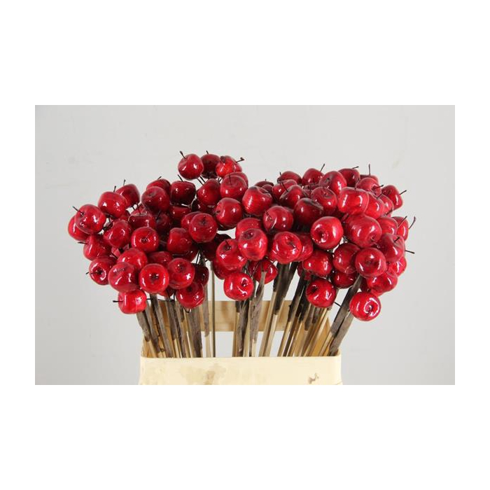 <h4>Stick Apple (3pcs) 2cm Red</h4>