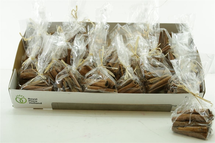 Droog Cinnamon 8cm 100gr/raffia