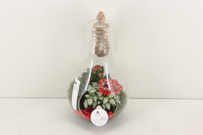<h4>arr. PL - Lamp XL - rood</h4>