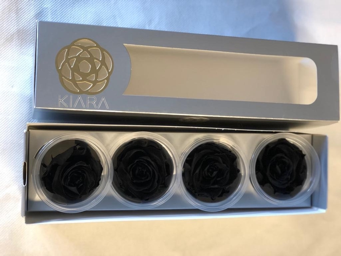<h4>Super Rose Black (4)</h4>