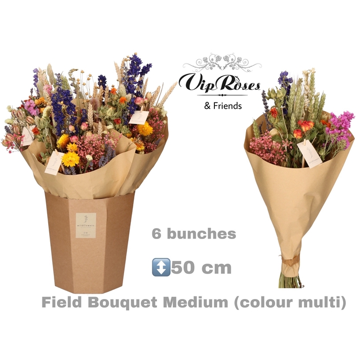 <h4>DRIED BOUQUET MEDIUM MULTI</h4>