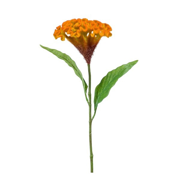 <h4>Silk Celosia 62cm</h4>