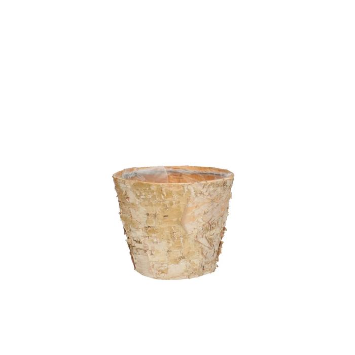 <h4>Hout Berk pot d11*09cm</h4>