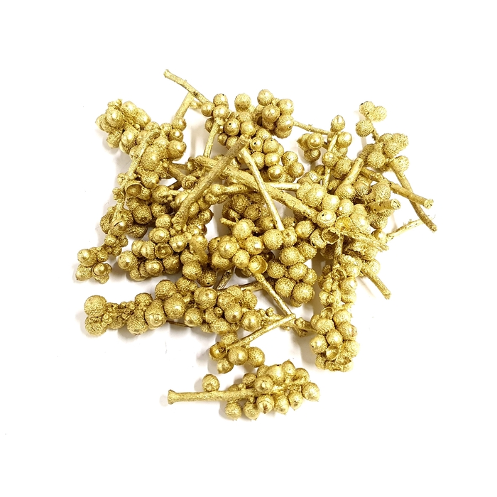 <h4>Acorn bunch 250gr in poly Gold</h4>