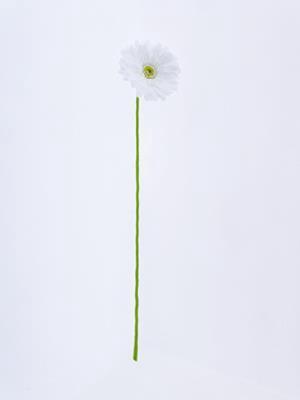 <h4>Af Gerbera 62cm White</h4>