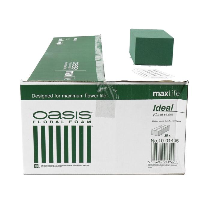 <h4>Oasis Blok Ideal x35 23*11*8cm</h4>