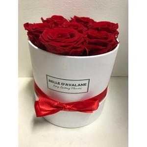 Flowerbox rd 15cm wit/rood
