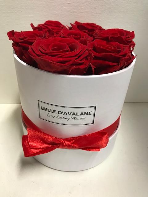 <h4>Flowerbox rd 15cm wit/rood</h4>